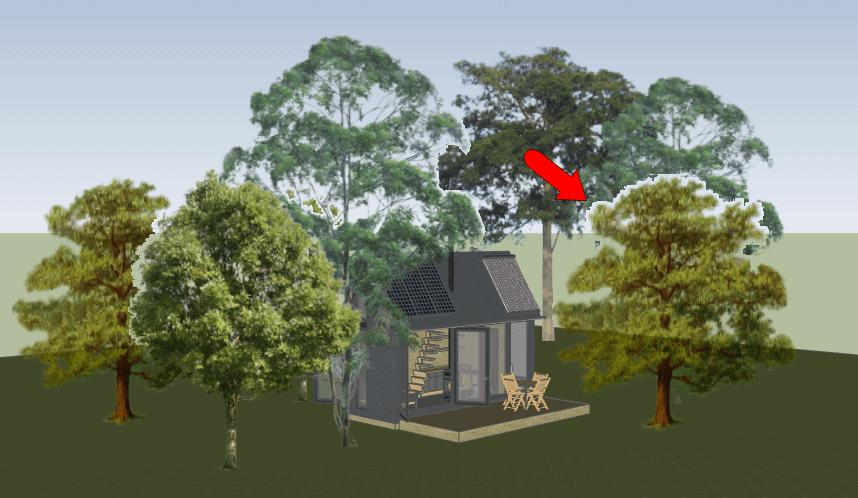 PNG Trees: Part 1 - 3D Warehouse - Daniel Tal