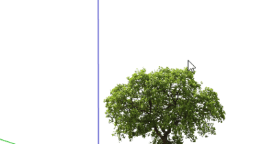 PNG Trees: Part 3 - Stand-Alone Tree Model